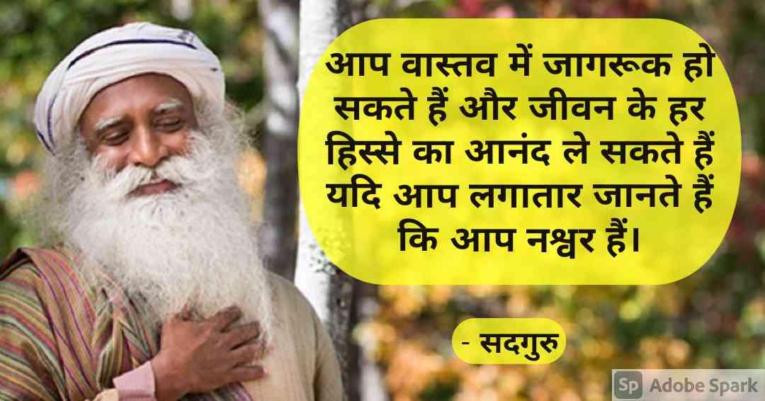 2. Sadhguru Quotes in Hindi